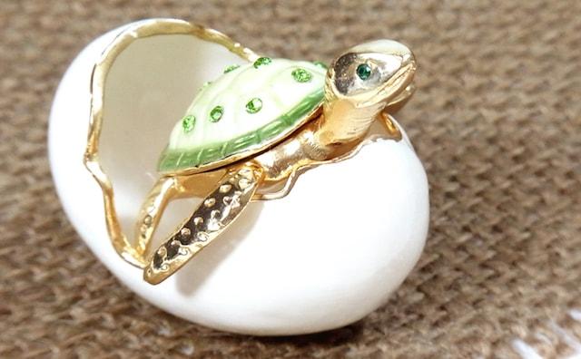 子ガメの宝石箱1
